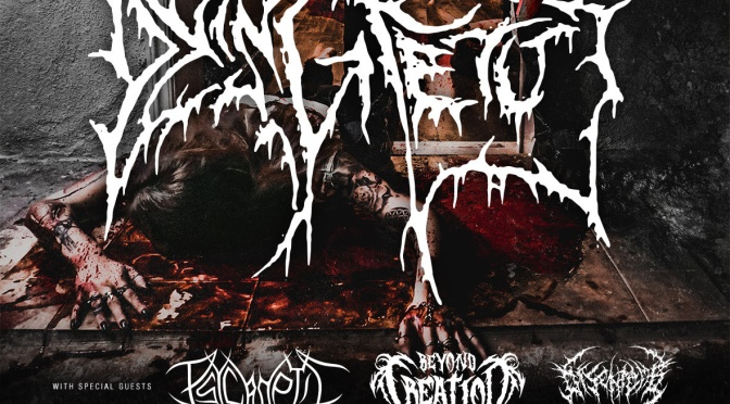 Beyond Creation kick off tour with Dying Fetus – Hamburg sold out!